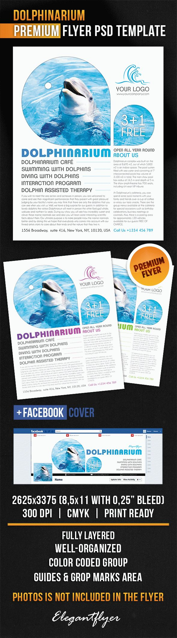 Dolphinarium – Flyer PSD Template + Facebook Cover