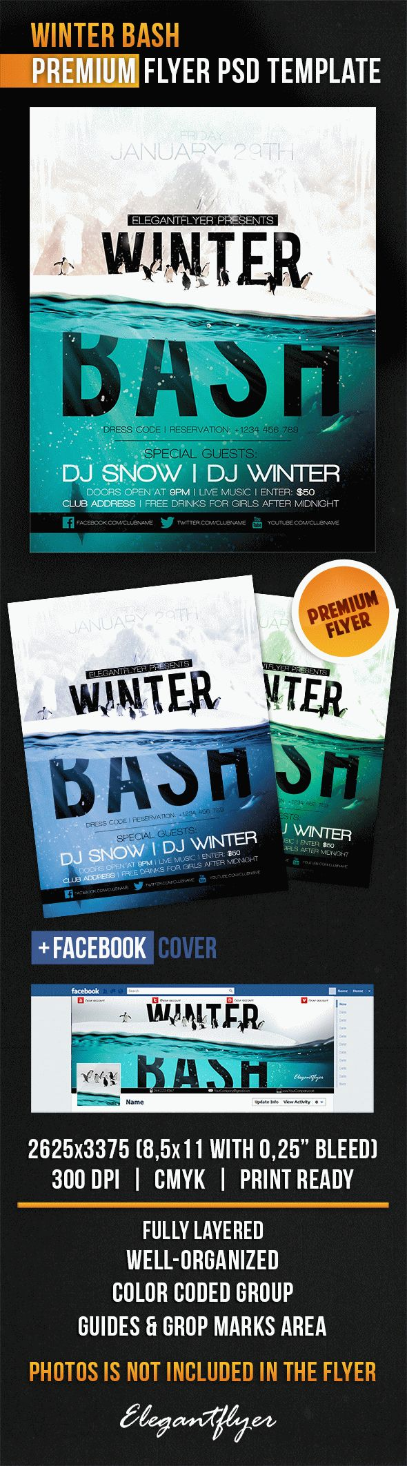 Winter Bash – Flyer PSD Template + Facebook Cover