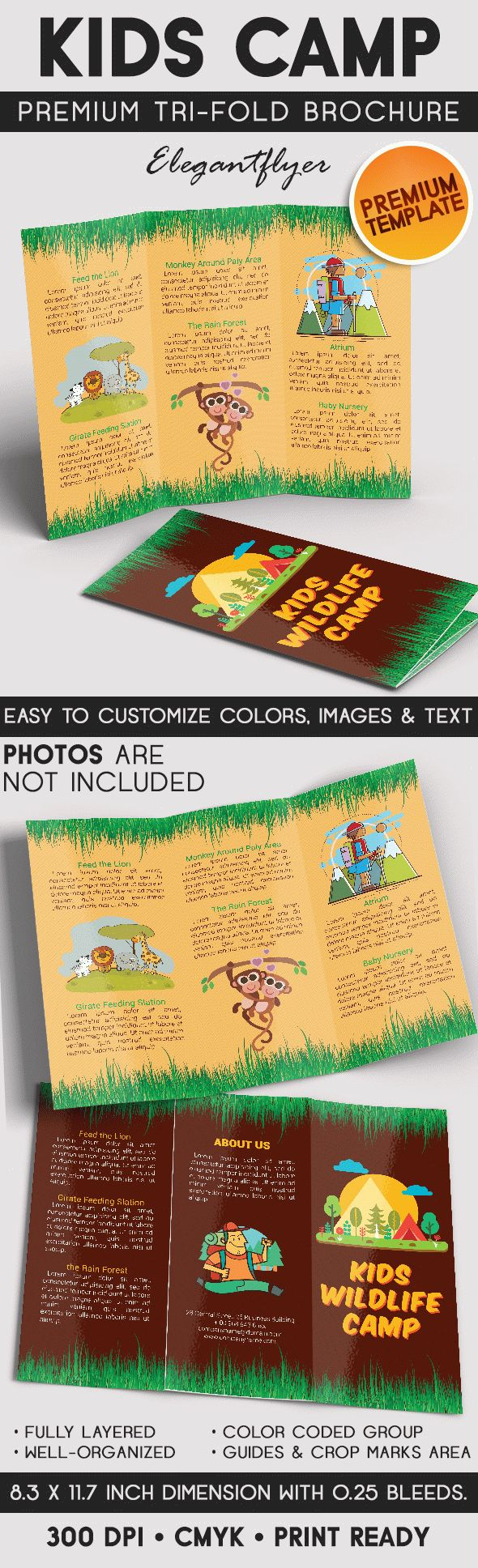 Kids Wildlife Camp – Tri-Fold Brochure  PSD Template