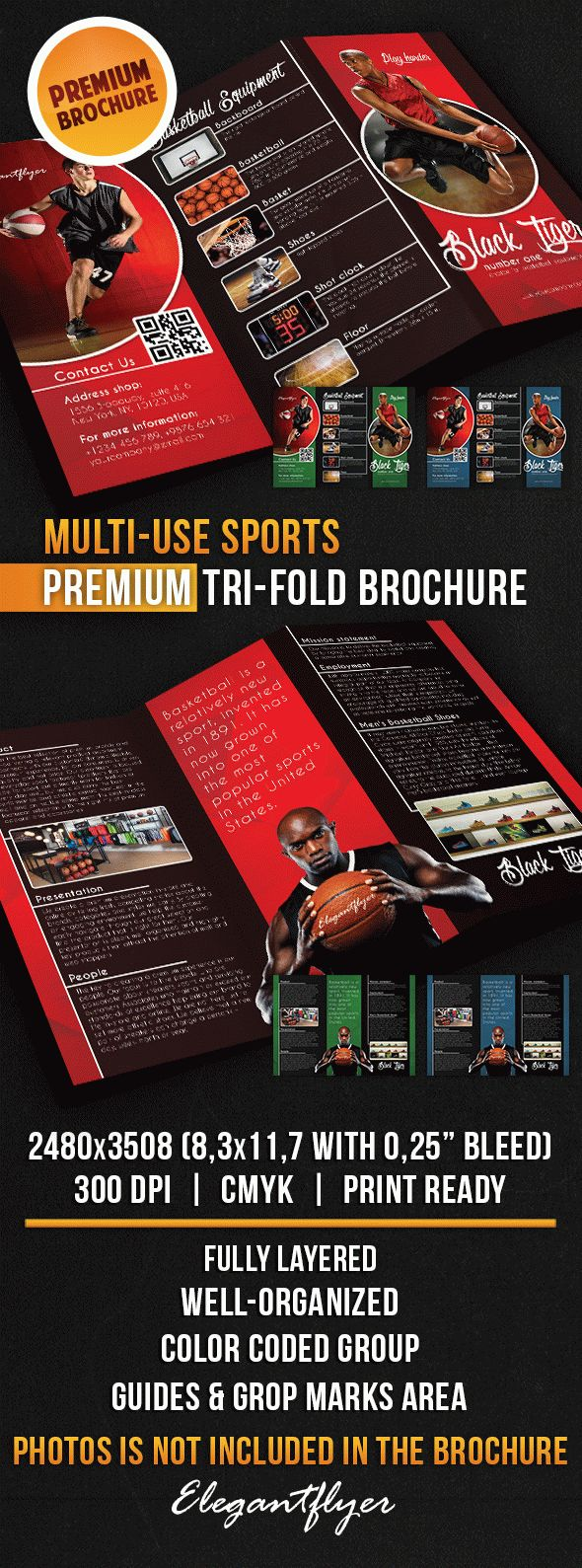Multi-use Sports – Tri-Fold Brochure PSD Template