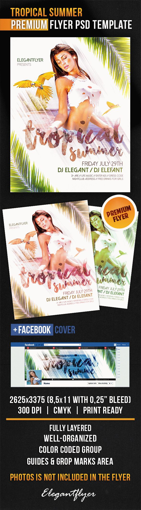 Tropical Summer Flyer in PSD