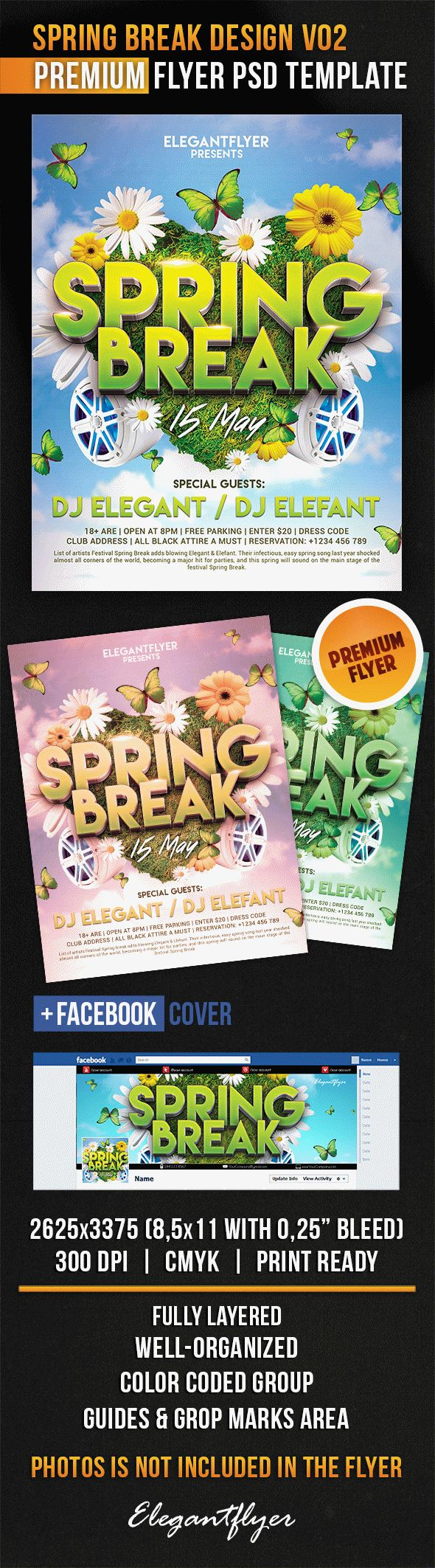 Spring Break Design V02 – Flyer PSD Template