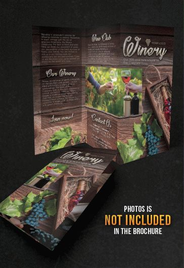 Winery – Tri-Fold Brochure PSD Template