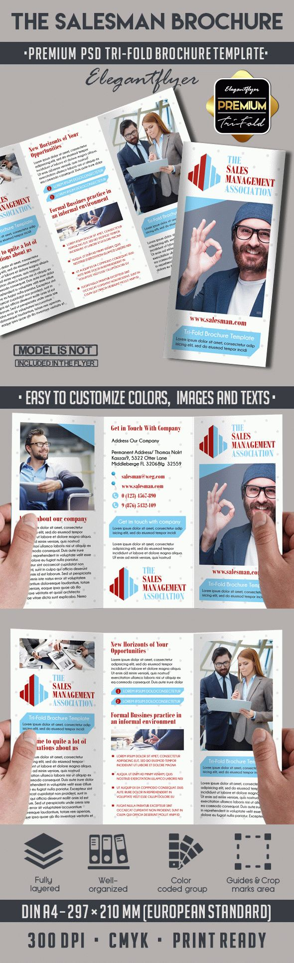Tri-Fold Brochure for The Salesman