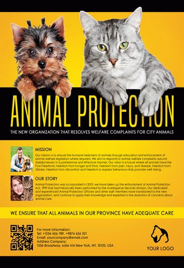 Animal Protection – Flyer PSD Template + Facebook Cover