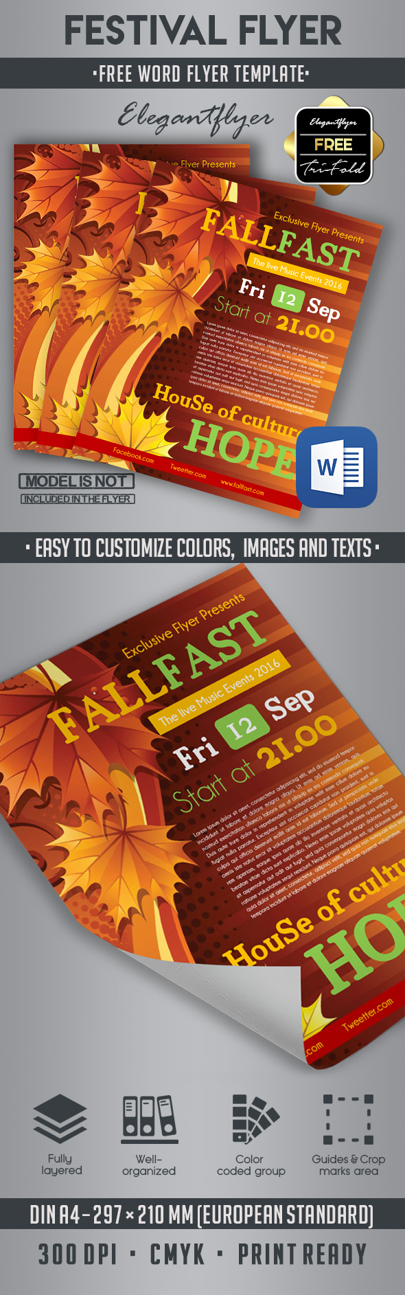 Flyer Template Word Free from www.elegantflyer.com