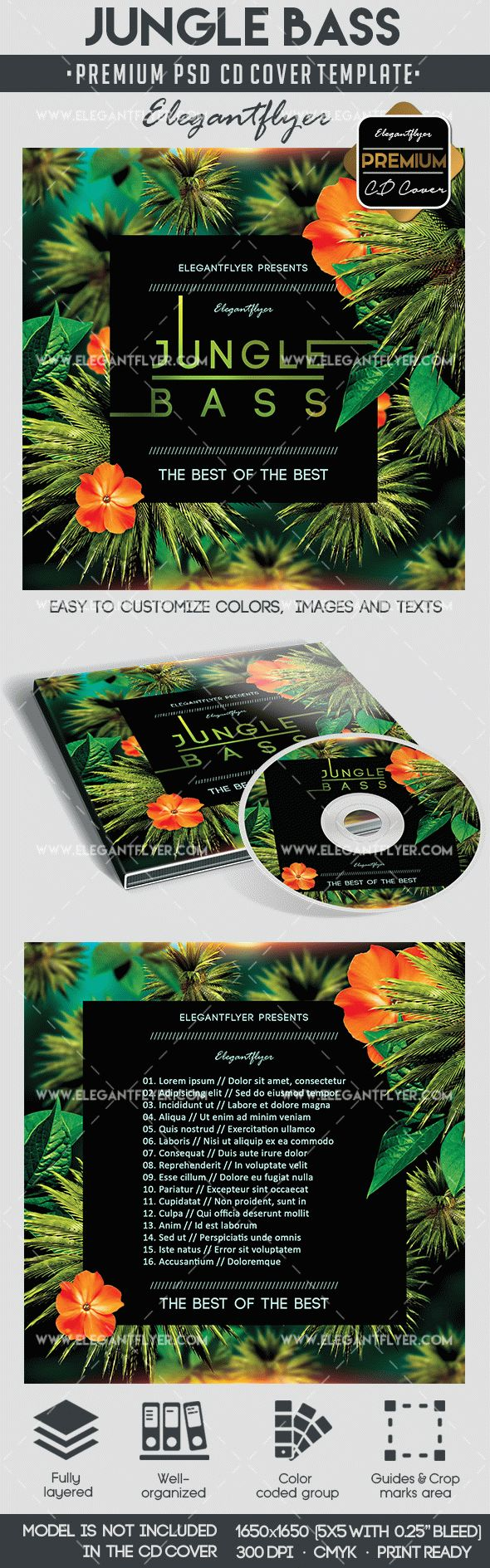 Jungle Bass – Premium CD&DVD cover PSD Template