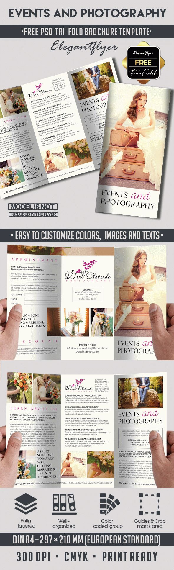 Free Design Brochure for Photography