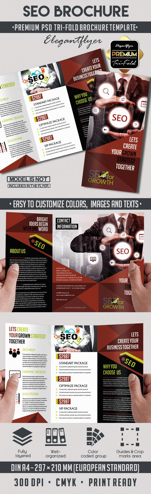 Tri-Fold PSD Brochure for SEO