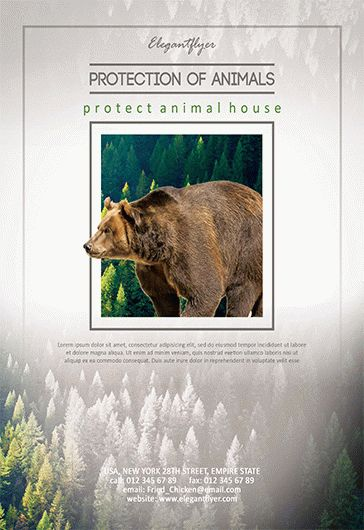 Protection Of Animals V02 – Flyer PSD Template