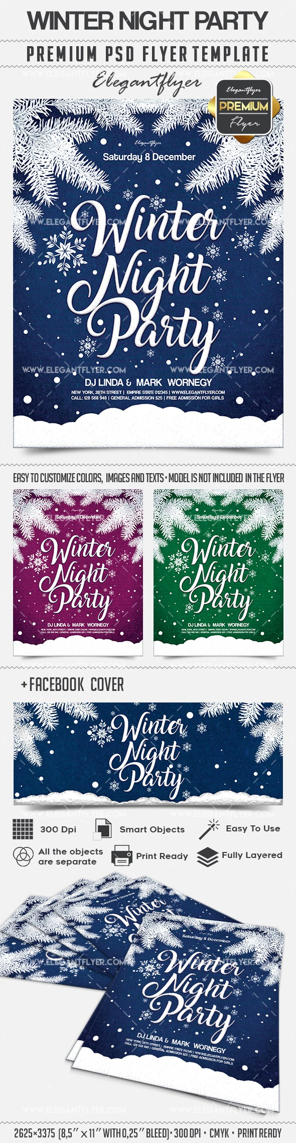 Winter Night Party – Flyer PSD Template + Facebook Cover