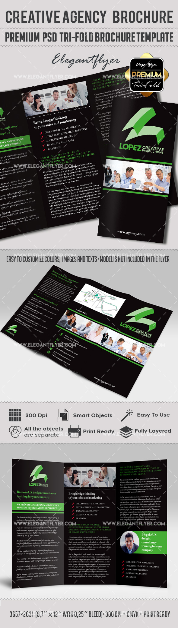 Tri-Fold Brochure for Creative Agency