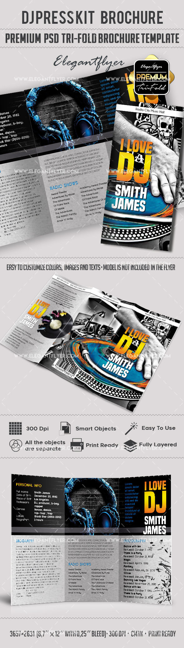 Brochure for dj press kit by elegantflyer for Dj press kit template free