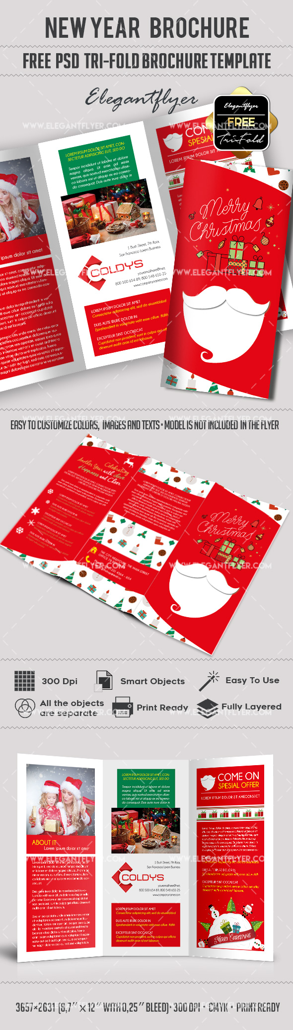 New Year – Free Tri-Fold PSD Brochure Template