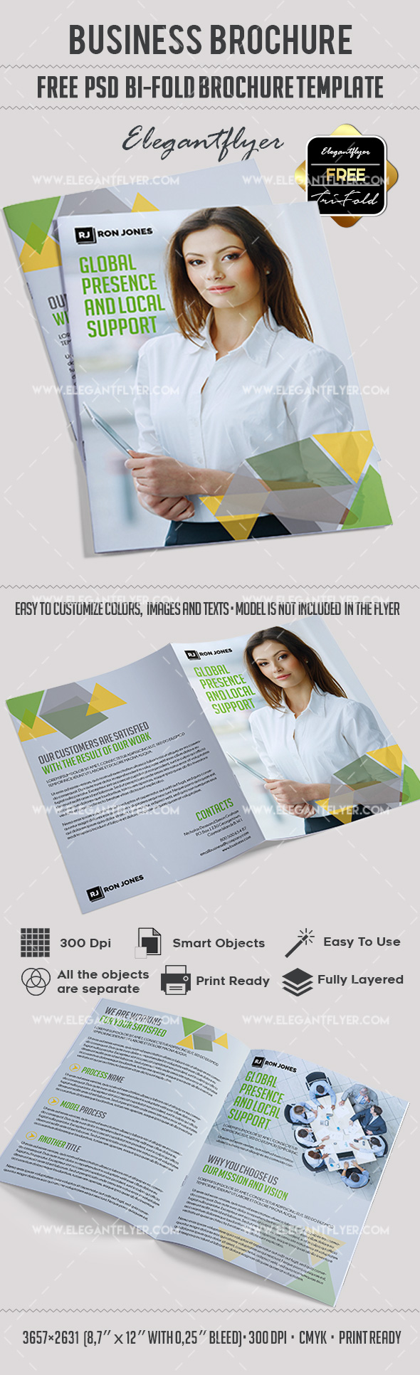 Business – Free Bi-Fold PSD Brochure Template