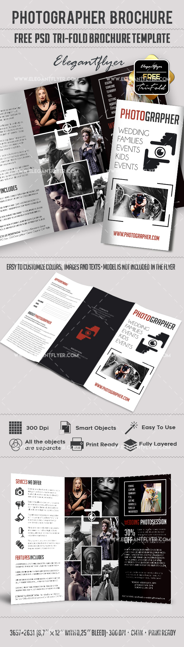 Free Tri-Fold Brochure for Photographer