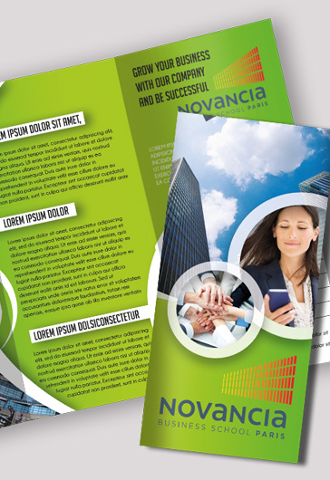Professional Business Brochure