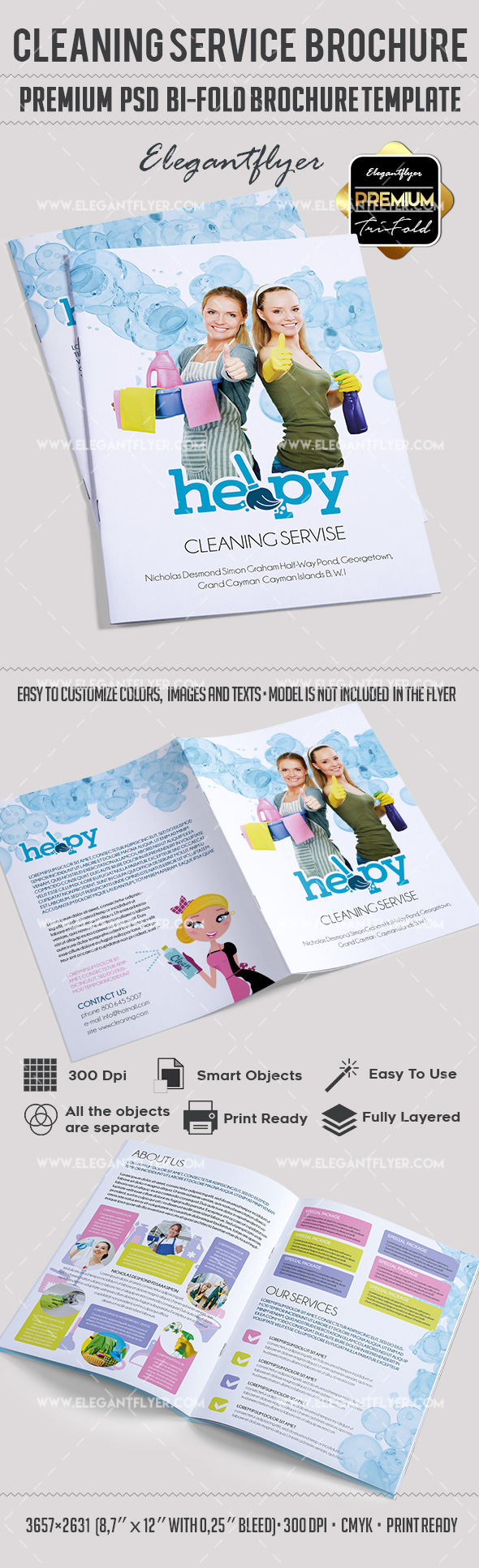 Cleaning services bi fold template by elegantflyer for It services brochure template