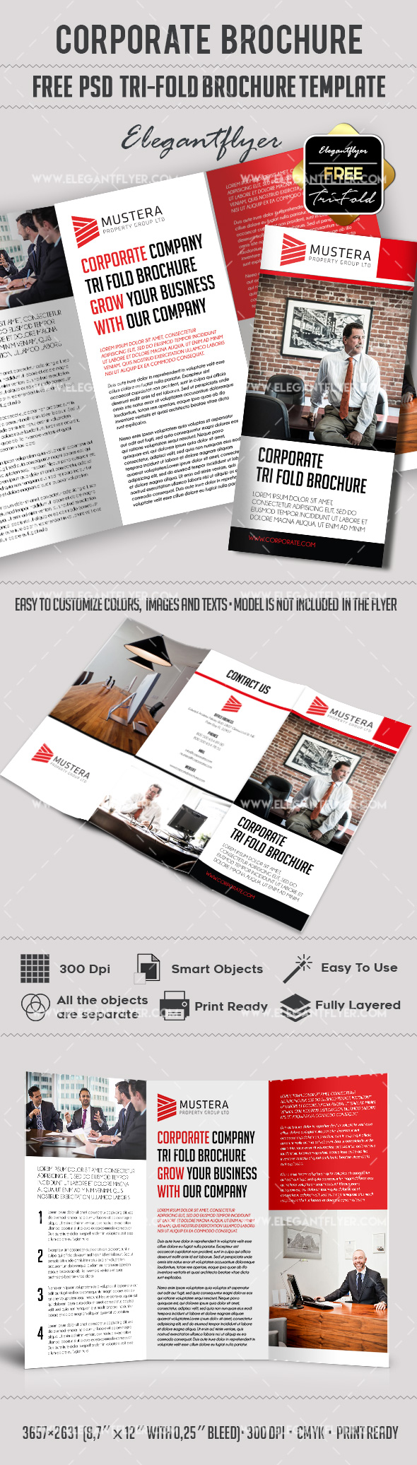 Corporate brochure template free by elegantflyer for Tri fold brochure template psd