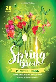 Spring Break V03 – Flyer PSD Template + Facebook Cover