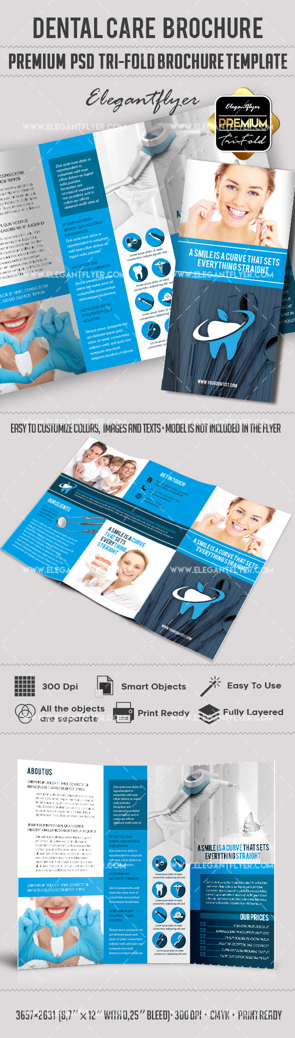 tri fold brochure for dentist theme by elegantflyer
