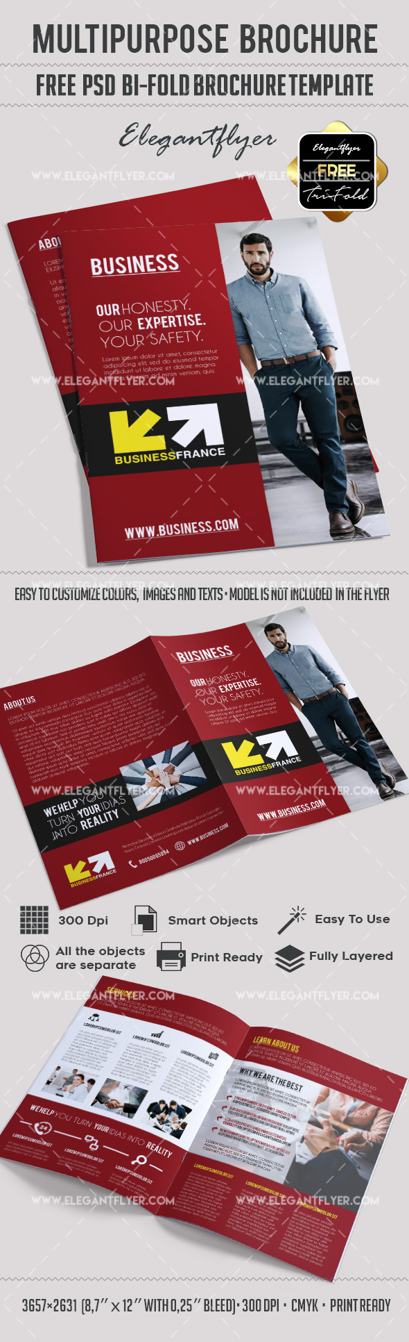 Free multipurpose brochure in psd by elegantflyer for Free bi fold brochure template 2