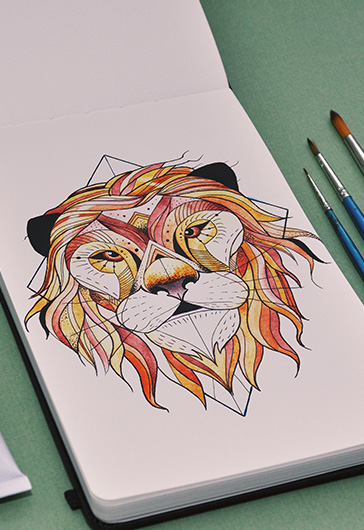 Lion – Premium Stock Illustration