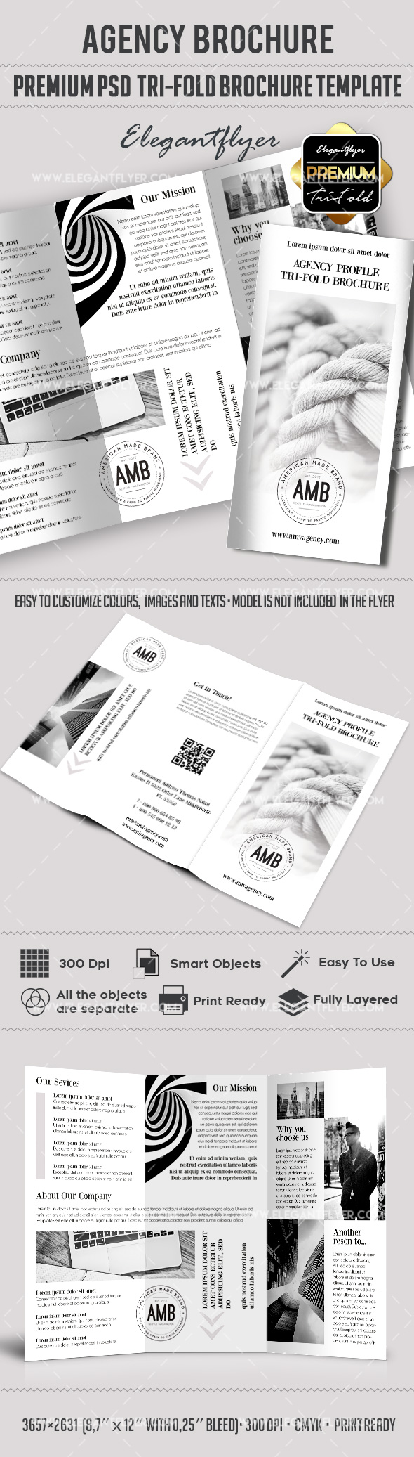 Agency Profile Tri-Fold PSD Brochure