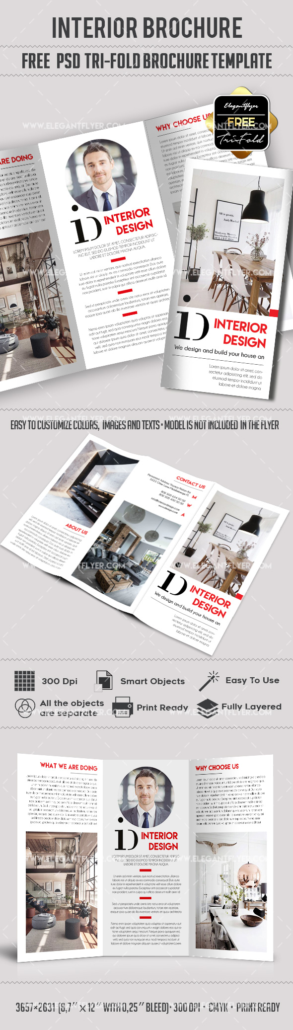 Interior design free tri fold brochure by elegantflyer for Brochure design psd templates