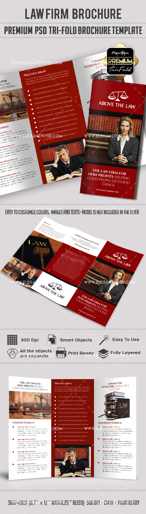 legal brochure template - law company premium tri fold psd brochure template by