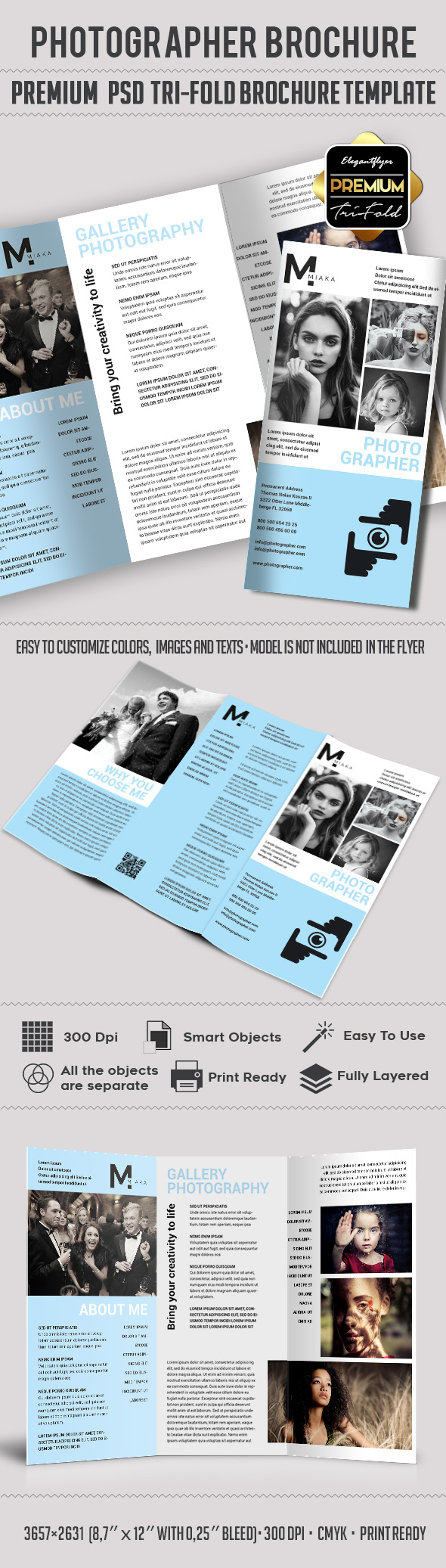 Tri fold brochure photography studio by elegantflyer for 3 fold brochure template psd