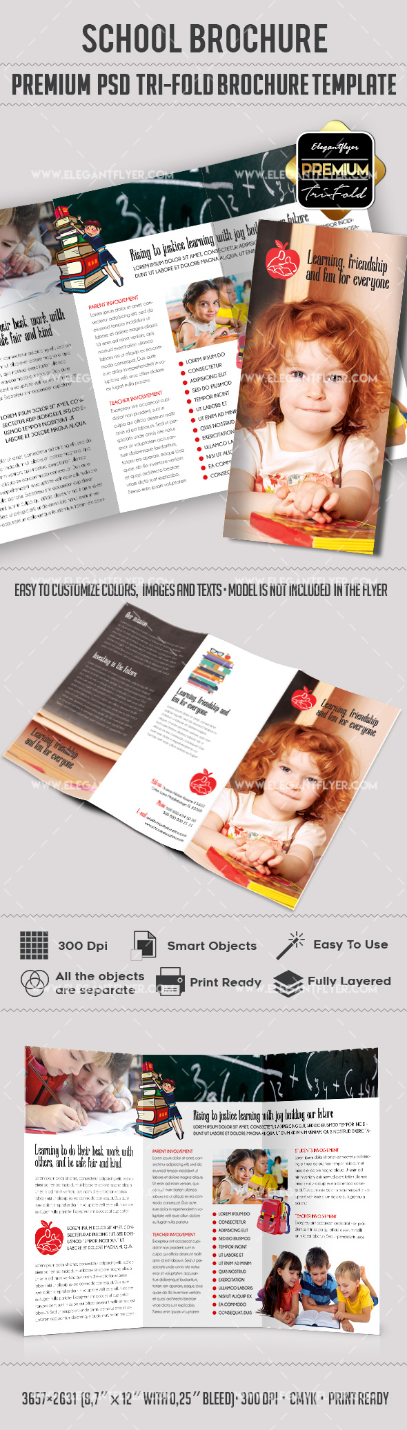 School Premium TriFold PSD Brochure Template By ElegantFlyer - Tri fold school brochure template