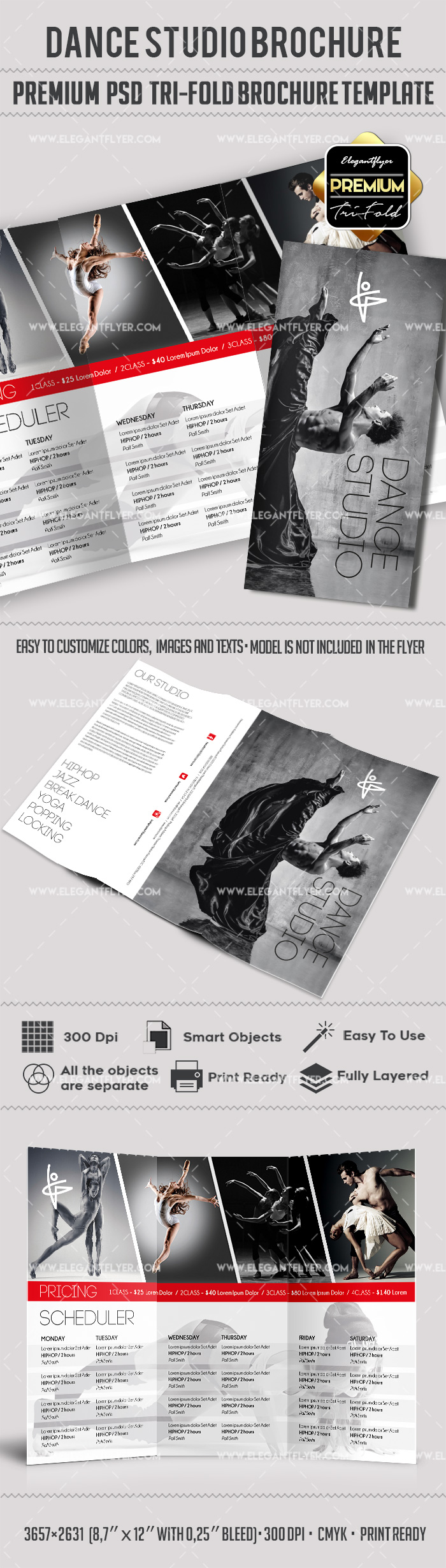 The Dancer Studio – Premium Tri-Fold PSD Brochure Template