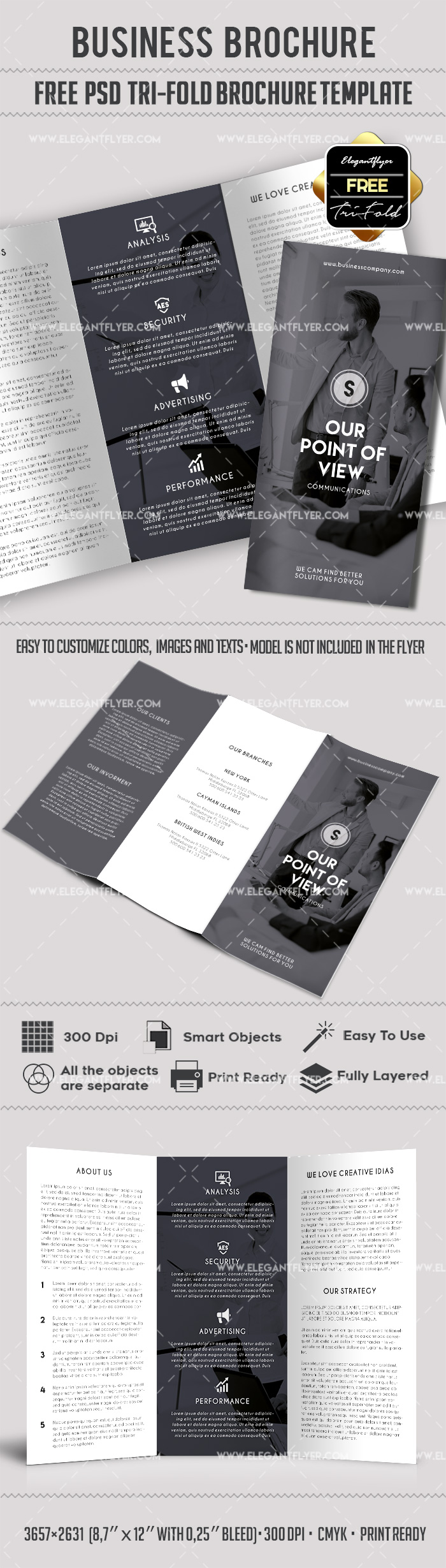Business – Free PSD Tri-Fold PSD Brochure Template
