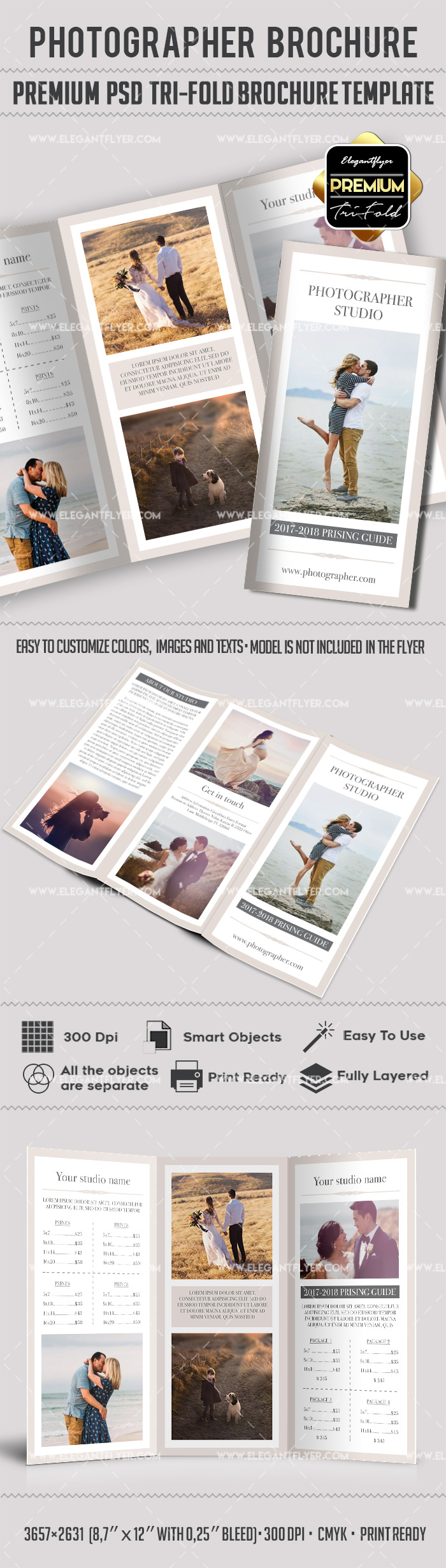 photography brochure templates free tri fold brochure photography template free by elegantflyer
