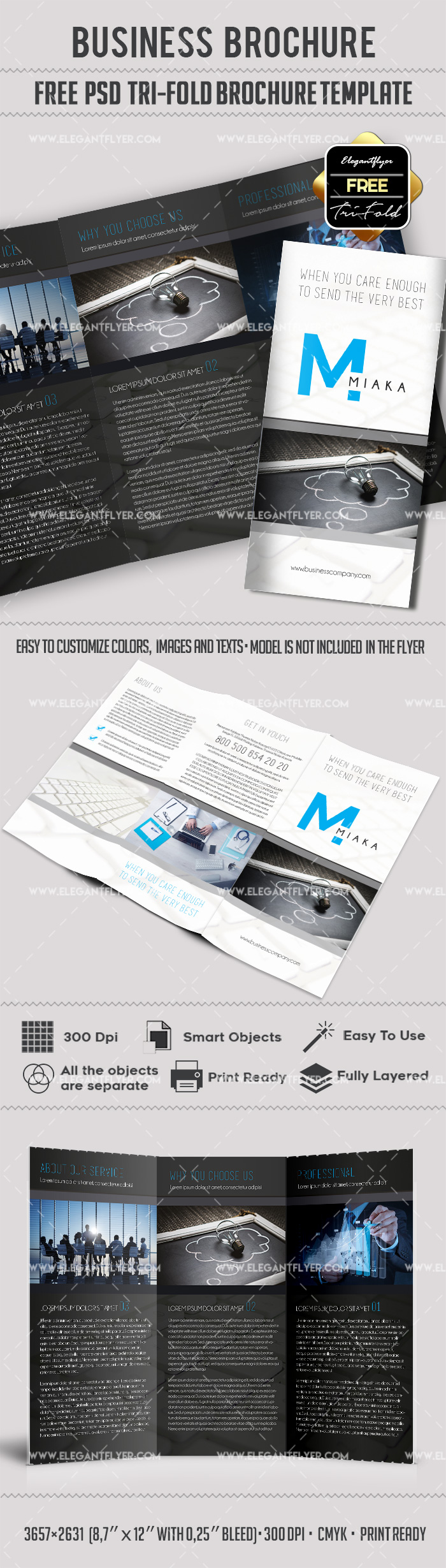 Tri fold brochure templates free download by elegantflyer for Free tri fold brochure template download