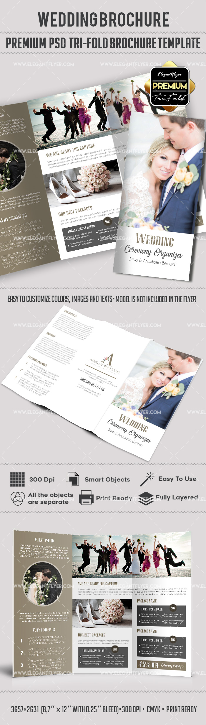 Wedding Dress Tri-Fold Brochure