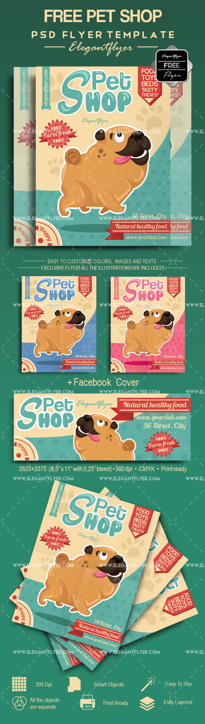 Pet Shop Free Flyer Template By Elegantflyer
