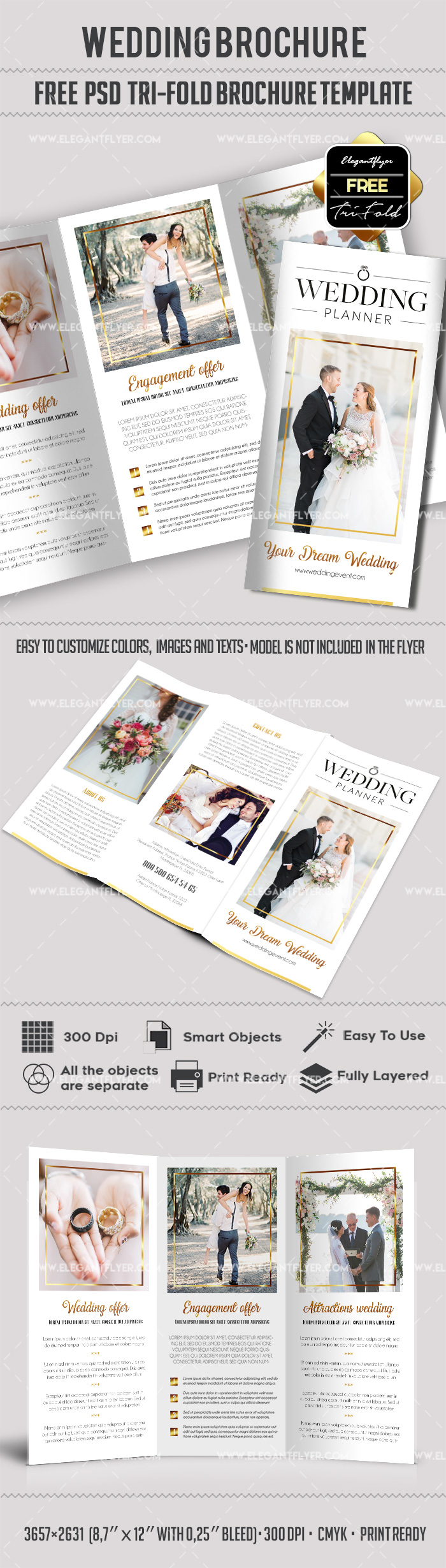 Wedding – Free PSD Tri-Fold Brochure Template