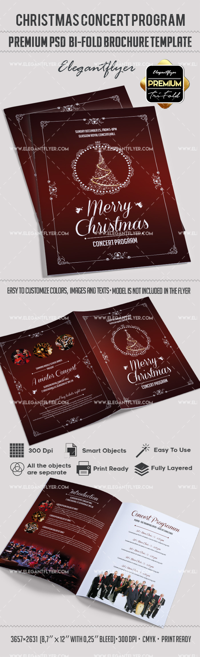 Christmas Concert Brochure in PSD