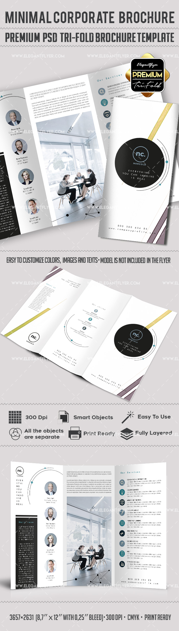 Tri-Fold Brochure for Minimal Corporate