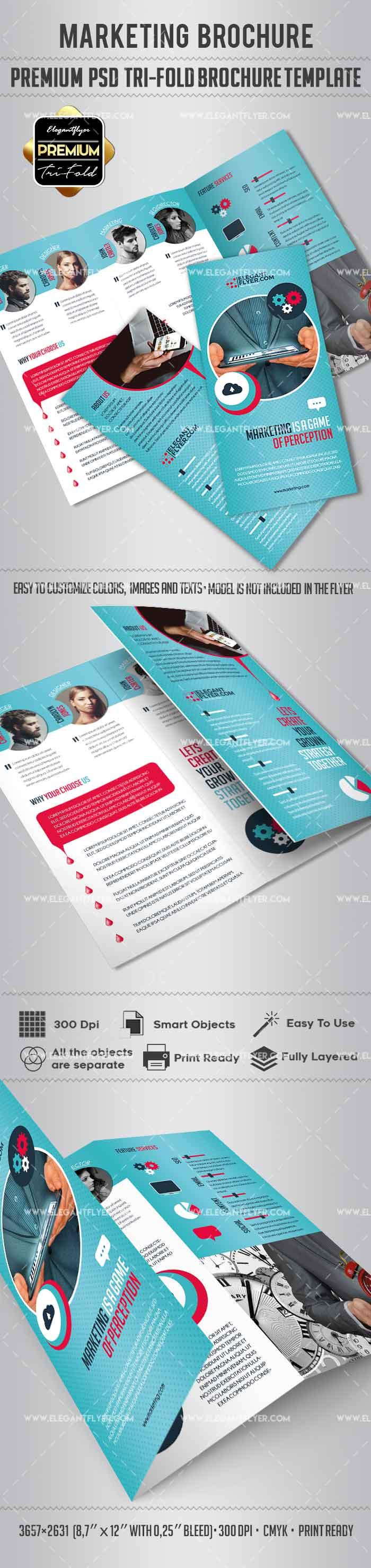 Tri fold brochure for marketing by elegantflyer for Brochure design psd templates