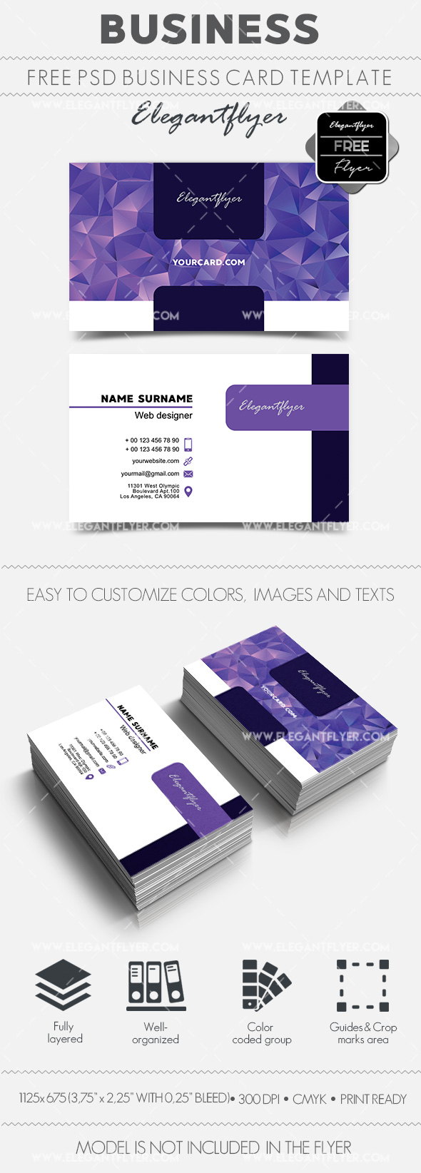 Business Card for Web Designer PSD Template