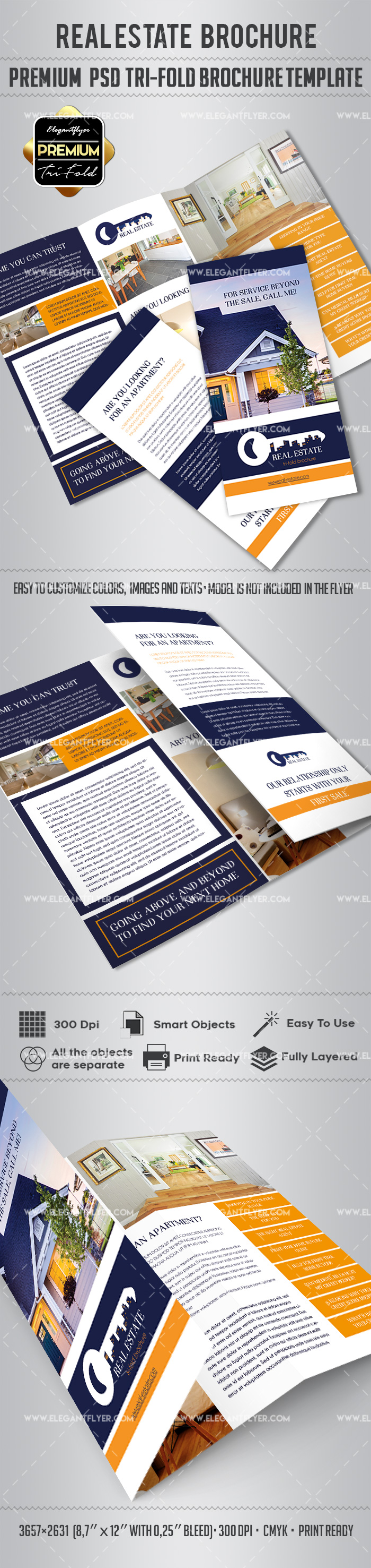 Real Estates Agency PSD Template