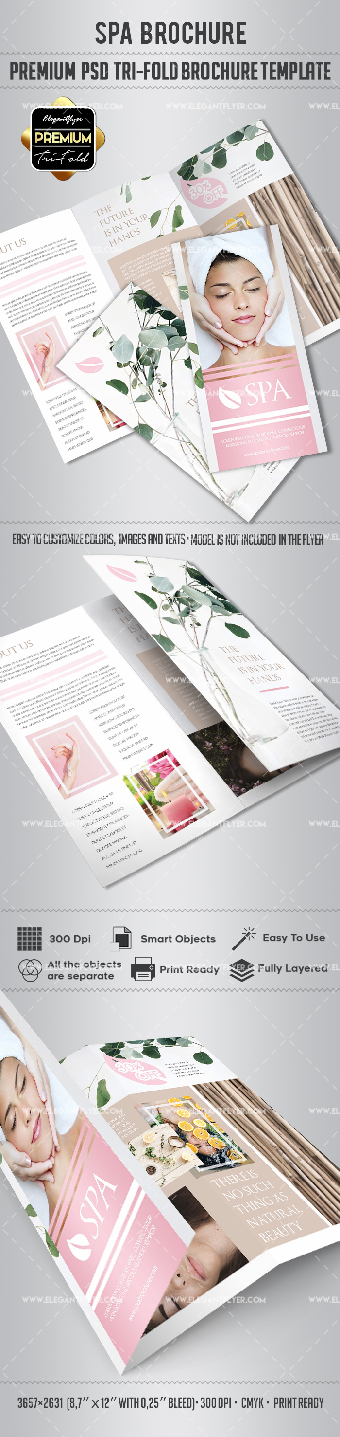 Template for relax spa by elegantflyer for Awesome tri fold brochure design