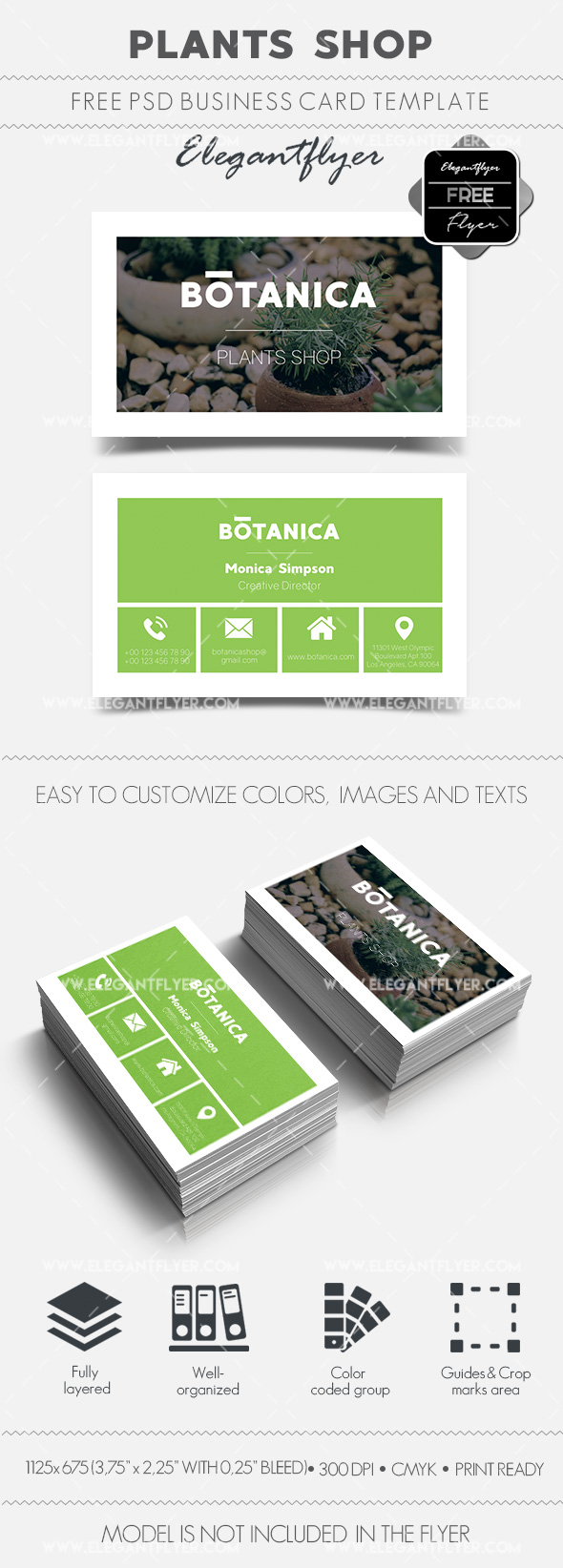 Plants Shop – Free Business Card Templates PSD