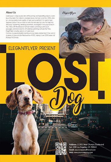Free Lost Dog Flyer Template  By Elegantflyer