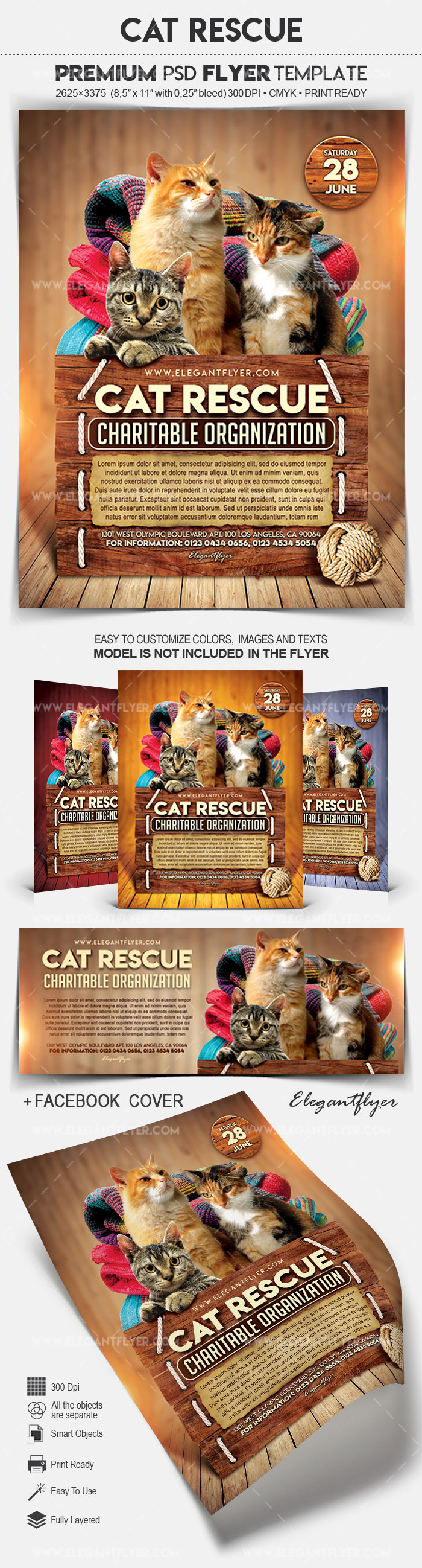 Cat Rescue – Flyer PSD Template
