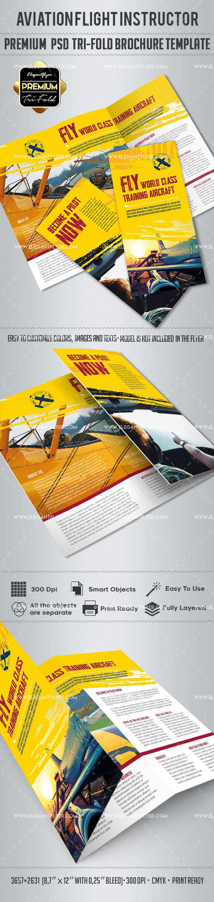 PSD Brochure for Aviation Flight