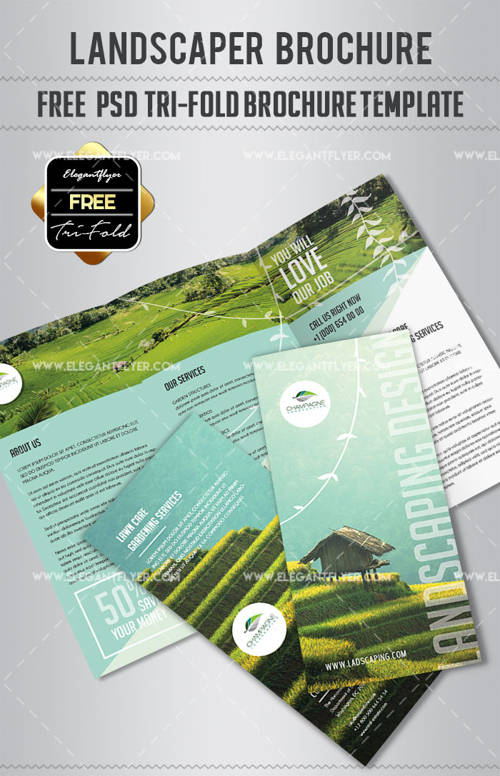 Business Advertisement or How to Get Benefit Choosing from 20 the Best Tri-Fold PSDs!